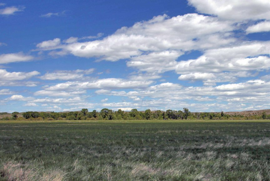 Expansive acreage available on this Montana property for sale
